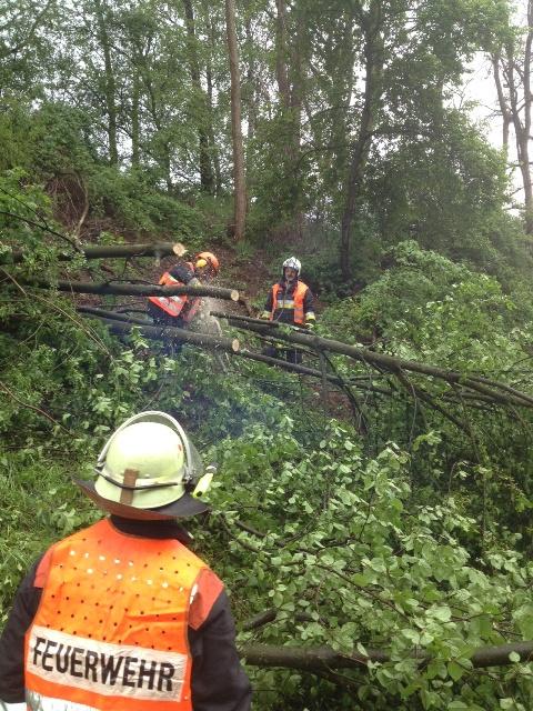 Einsatzkräfte aus Eiweiler beim Beseitigen des Baumes