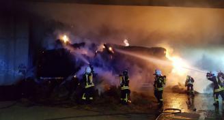 Einsatz 2017-08-25 Brand eines Anhaengers Bild5